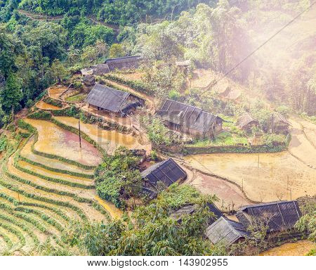 Cultivated Rice Fields On Terraced Mountain Farm Landscapes.