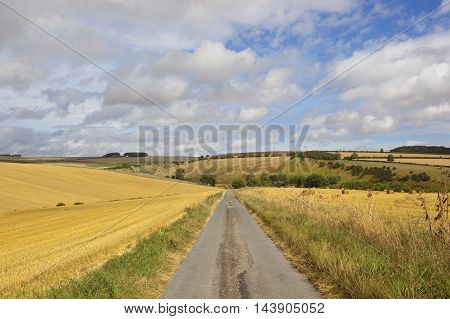 Harvested Fields With Road