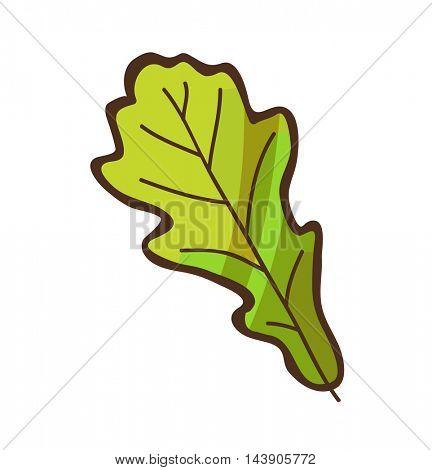 Autumn or fall leaf. Cartoon simple illustration. Vector isolated on white.