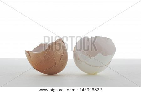 Two beautiful eggshell white and brown on white background with copy space.