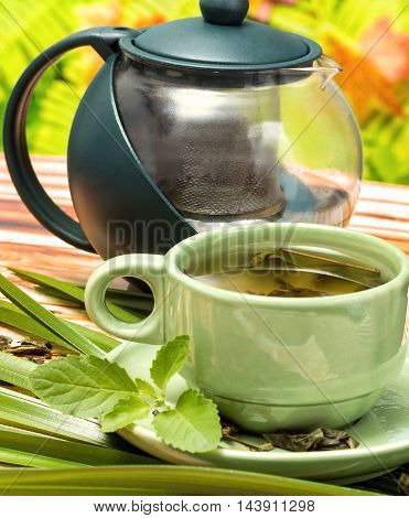 Mint Green Tea Indicates Refreshes Beverage And Spearmint