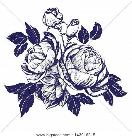 floral blooming rose branch hand drawn vector illustration sketch
