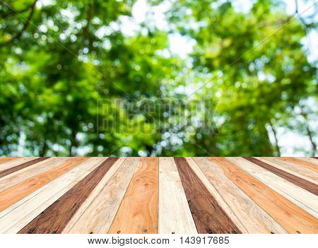 Empty Perspective Room With Blurred Green Tree Forest And Wooden Plank Floor,template Mock Up For Di
