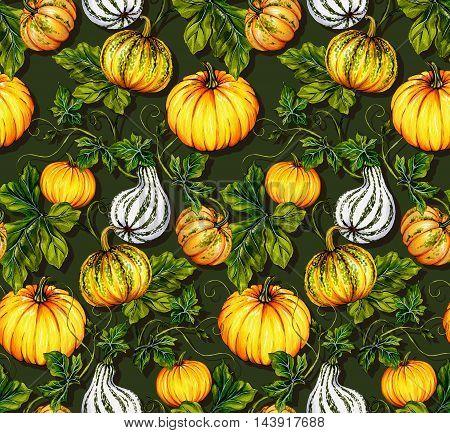 halloween pattern with illustrated pumpkins. Botanical illustration. dark green background, orange kurbis pumpkins