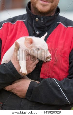 portrait of farmer holding a cute pig