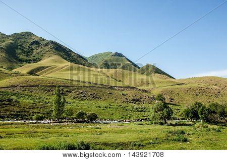 Mountain Yurt