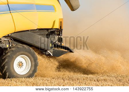 big Combine harvester in wheat fields with sun