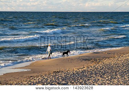 Lesnoy Kaliningrad region Russia - August 1 2016: Woman and dog walking on the shore of the Baltic sea at sunset