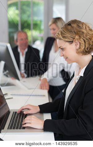 business team working together at big office