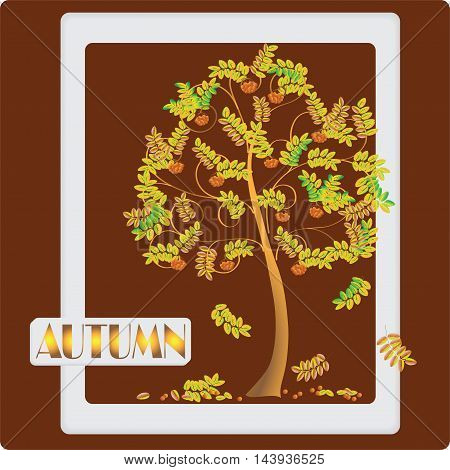 Rowan tree on dark red background. Autumn composition. The design of the banner, frame, poster and presentation. Vector image.