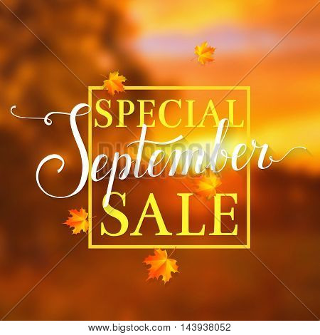 Special September sale. Blurred autumn background with discount label. Vector promo banner.