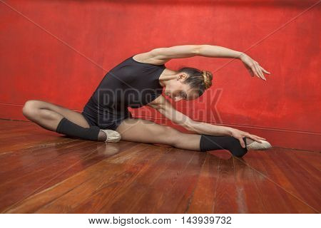 Female Ballet Dancer Practicing On Hardwood Floor