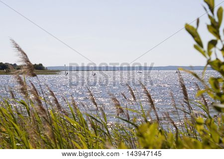 Lots Of Windsurfers In A Lake Of France In Summer