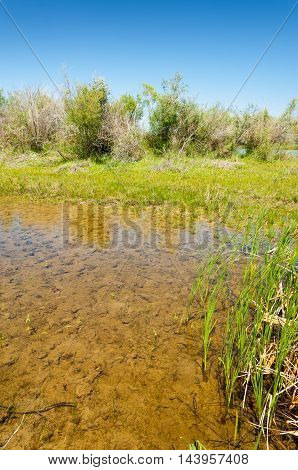 River, Stream, Flood, Effluent, Ford, Nulla