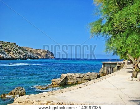 Quay wall at mediterranean coast turquoise water rocks and tree