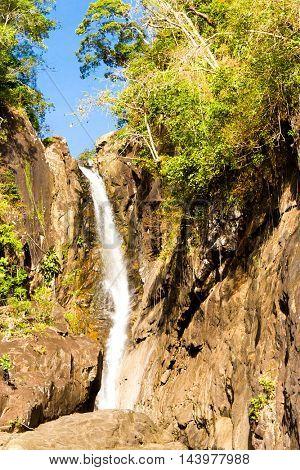 River Flowing Jungle Scene
