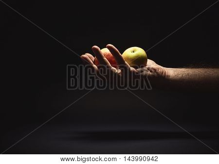 Male Hand Holding Two Apples