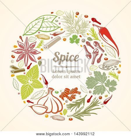 Spices and herbs icons in circle composition. Healthy lifestyle concept. Vector illustration