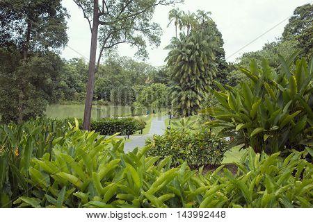 SINGAPORE - NOVEMBER 16 2014: people take rest on the lake shore among fresh green nature of world famous Botanical Garden in Singapore on November 16 2014.