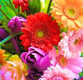 image of close-up shot  - close up shot of a very abundant spring bouquet