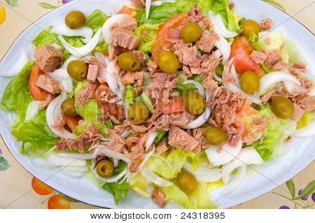 photo of green salad of tomato and lettuce