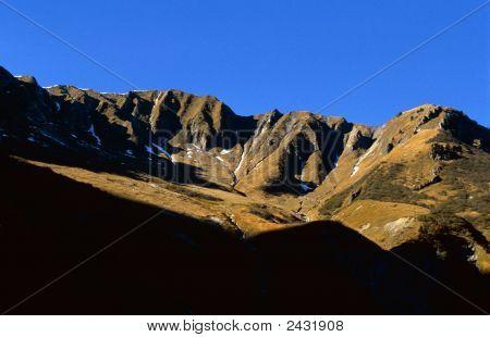 Shady Valley