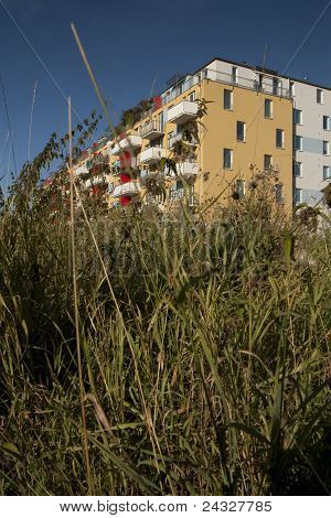 City Overgrown By Wild Plants
