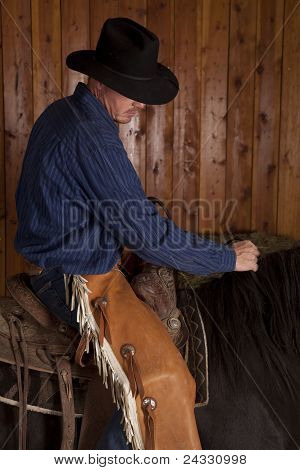 Cowboy Riding Close Wood Back