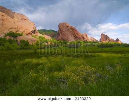 Roxborough Spring