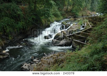 Middle Tumwater Falls And Fish Ladder