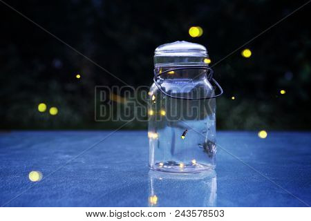 Fireflies in a jar outdoors