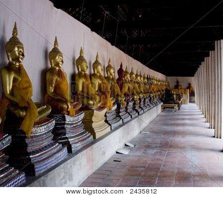 Row Of Buddhas