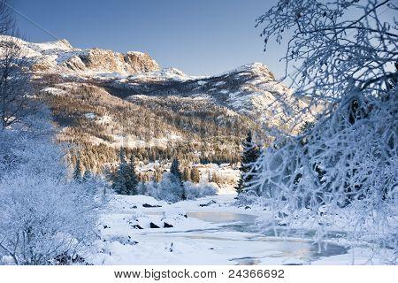 Magic Winter