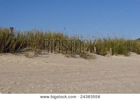 Please Keep Off The Dunes