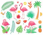Cartoon Cute Pink Flamingo And Tropical Plants. Beach Palm, Green African Plant Monstera Leafs, Flor poster