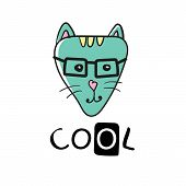 Cool Cat Slogan And Face Cat Vector. Cute Cat Face Hand Drawing And Cool Sign - Vector Illustration  poster