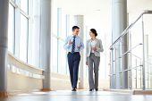 image of business-partner  - Confident business partners walking down in office building and talking - JPG