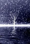 picture of fantasy landscape  - Lonely winter tree and reflection in water