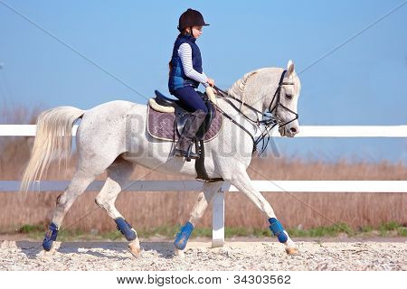 The Horsewoman On A White Horse