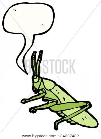 cricket illustration