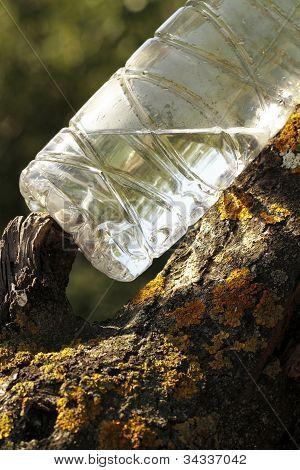 Garbage Debris In Forests