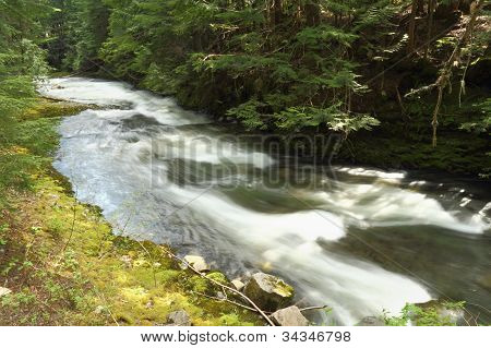 Mountain Stream, Whistler, British Columbia