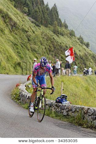 The Cyclist Alessandro Petacchi