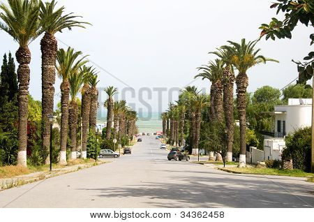 Rue Dag Hammarskjoeld Road Carthage-hannibal Tunis Tunisia  To Mediterranean Sea