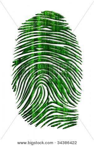 Matrix like finger print with streaming binary
