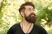 Bearded And Beardy. Bearded Man On Natural Environment. Bearded Hipster In Casual Style On Summer Ou poster