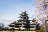 Matsumoto Castle During Cherry Blossom (sakura) Is One Of The Most Famous Sights In Matsumoto, Nagan poster