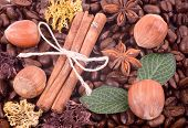 stock photo of circumcision  - Coffee beans and cinnamon - JPG
