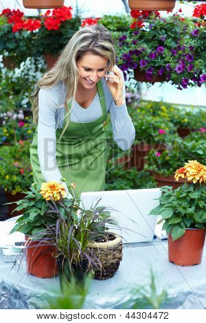 People working in nursery. Gardening background.