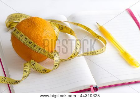 meter and nutrition diary